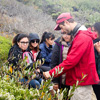 One of many class visits to Ano Nuevo Reserve